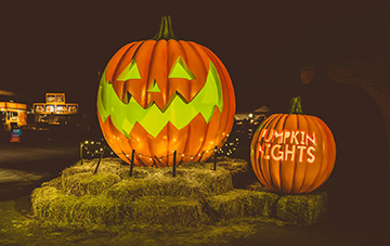 pumpkin nights1